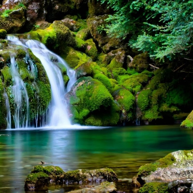 10 Latest 3D Nature Wallpaper Download FULL HD 1920×1080 For PC Desktop 2020 free download nature wallpaper 800x800