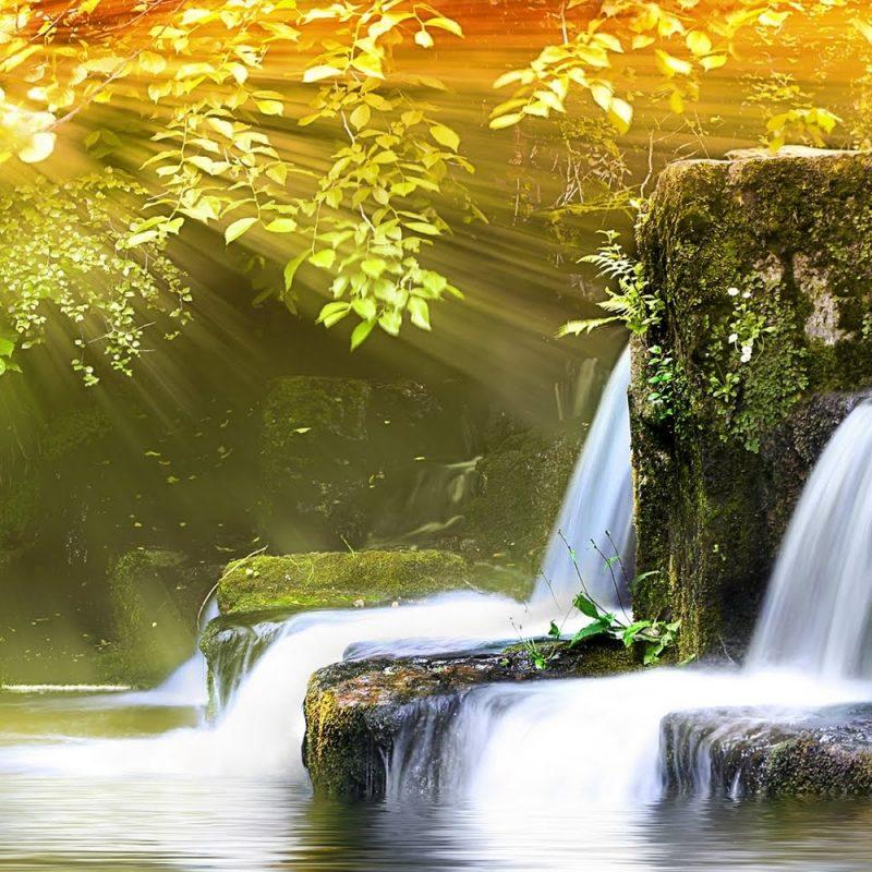 10 New Best Wallpapers Hd Nature FULL HD 1080p For PC Desktop 2021 free download nature wallpaper hd desktop 800x800