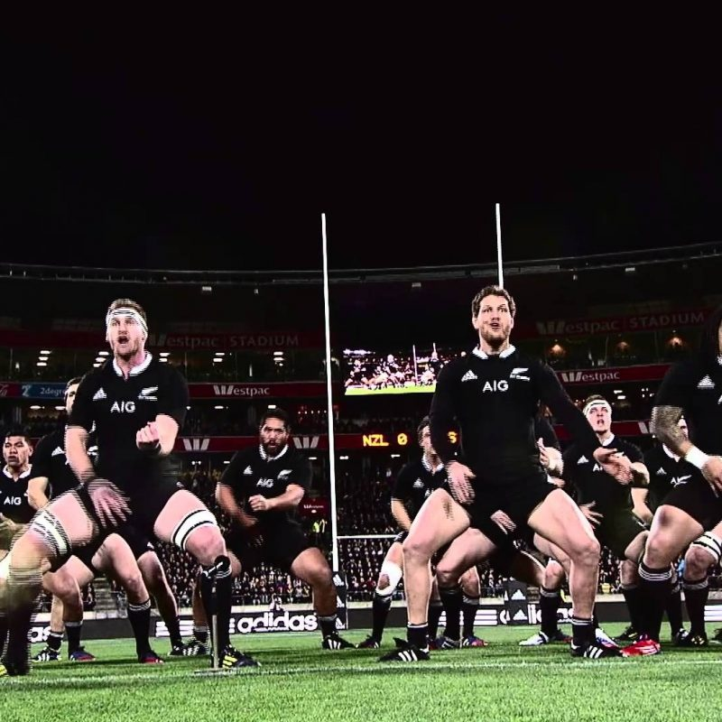 10 Latest New Zealand All Blacks Wallpapers FULL HD 1920×1080 For PC Background 2018 free download new zealand all black hd wallpapers free download pixelstalk 800x800