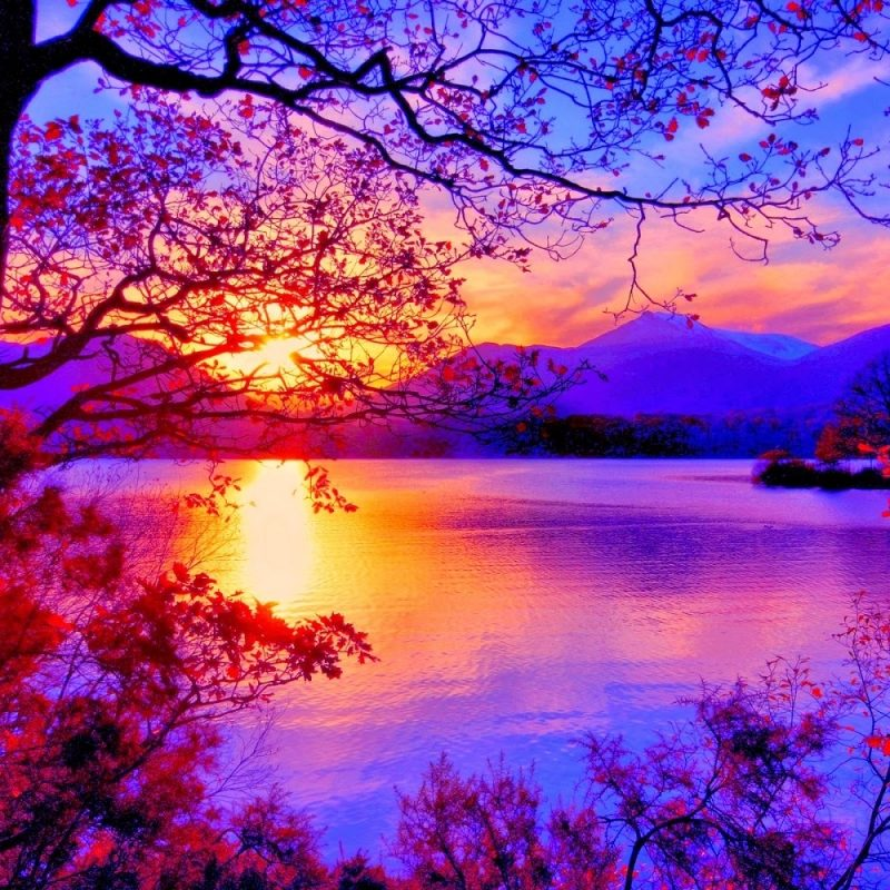 10 New Beautiful Scenery Wallpapers Full Hd FULL HD 1920×1080 For PC Desktop 2020 free download nice wallpapers from scenery in hd 1 800x800