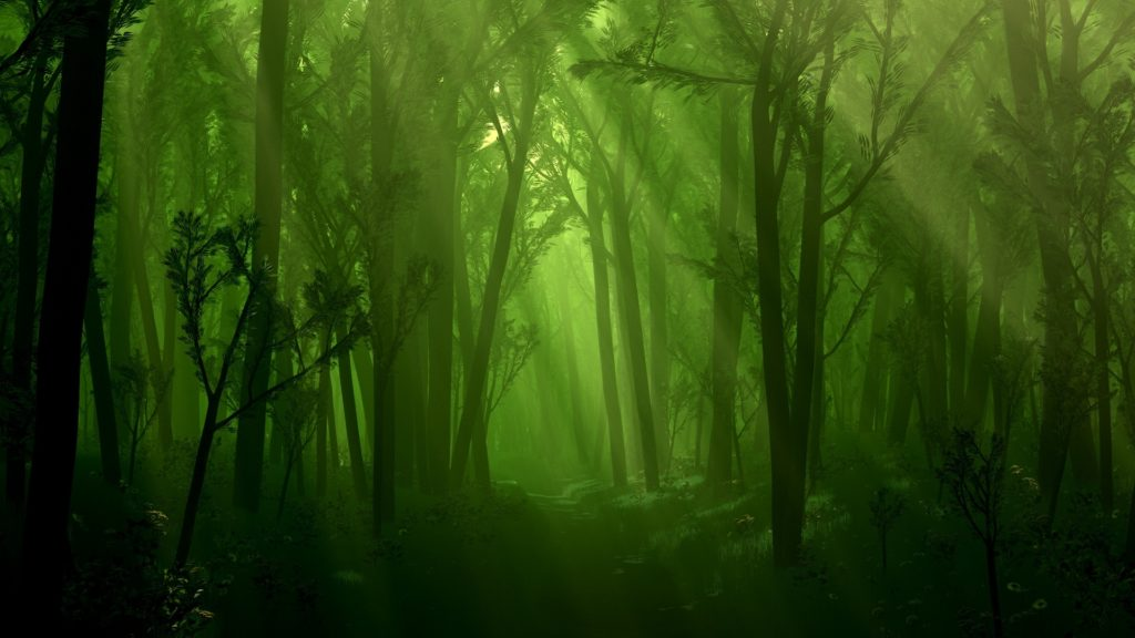 10 New Fantasy Forest Wallpaper Hd FULL HD 1080p For PC Desktop 2020 free download night beach wallpapers high quality excitelt creative 1024x576
