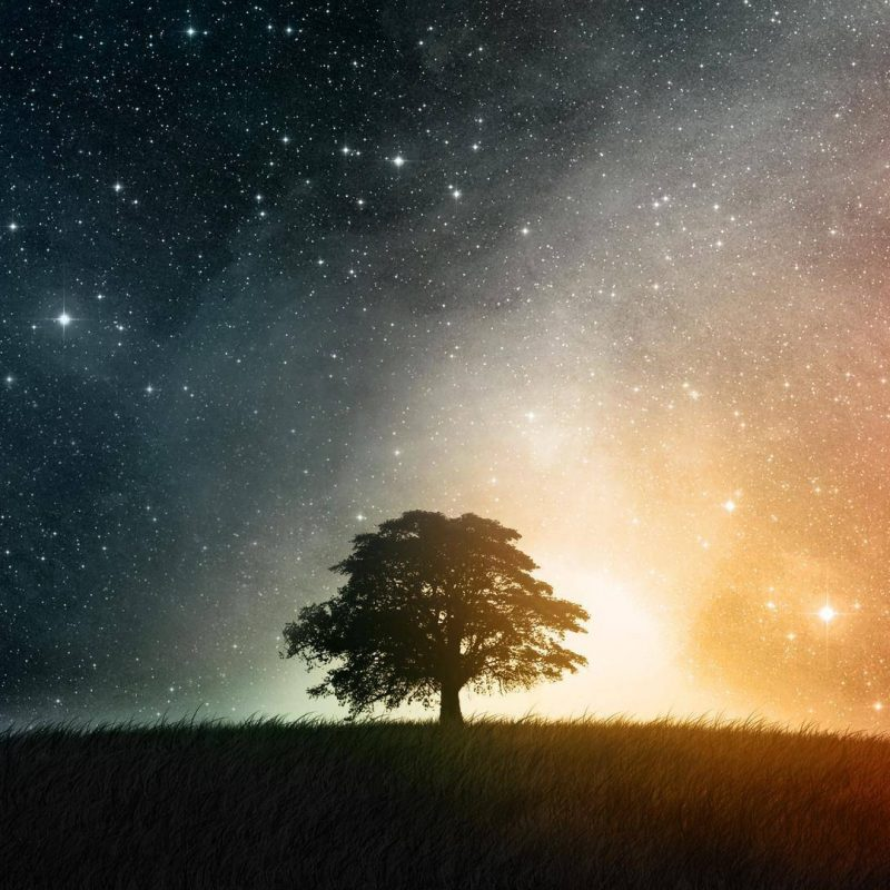 10 Latest Night Sky Stars Hd Wallpaper FULL HD 1920×1080 For PC Desktop 2021 free download night sky stars wallpapers 23 download hd wallpapers 800x800