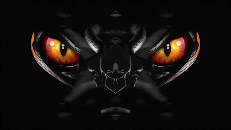 10 Best Nike Hyper Venom Logo FULL HD 1080p For PC Background 2018 free download nike hypervenom phantom black black bright citrus youtube 800x450