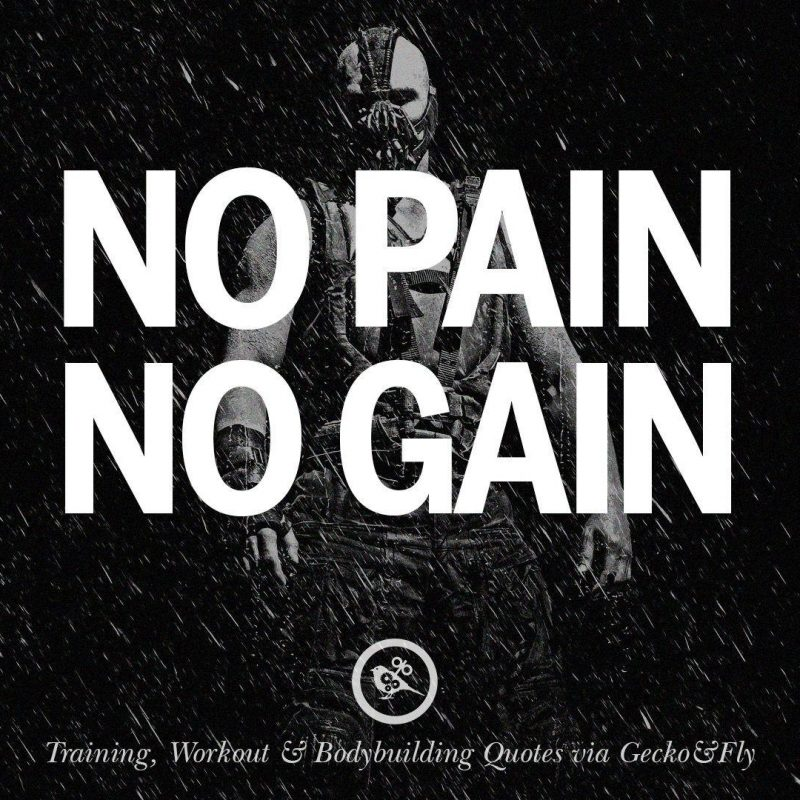 10 Top No Pain No Gain Wallpapers FULL HD 1920×1080 For PC Background 2018 free download no pain no gain wallpapers wallpaper cave 3 800x800