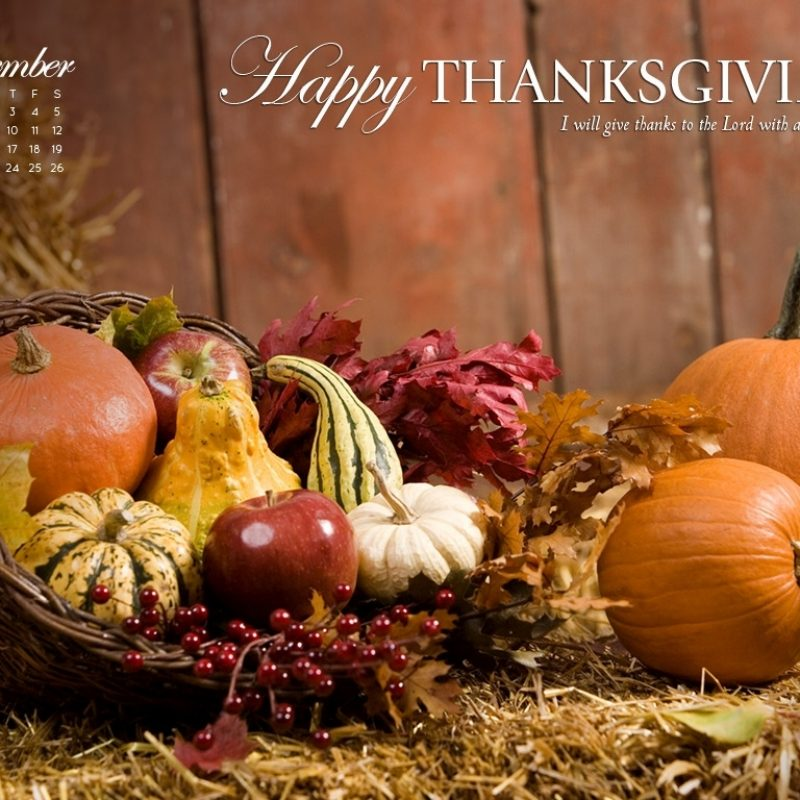 10 Latest Free Thanksgiving Computer Wallpaper FULL HD 1080p For PC Background 2018 free download november 2012 thanksgiving wallpaper celebrate thanksgiving 1 800x800