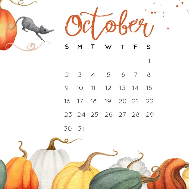 10 Most Popular October 2016 Desktop Wallpaper FULL HD 1920×1080 For PC Desktop 2018 free download october 2016 calendar printables and tech pretties 800x800