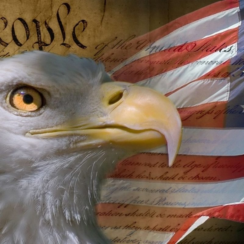 10 Latest American Flag Eagle Background FULL HD 1080p For PC Desktop 2021 free download of the most american things to ever happen 800x800