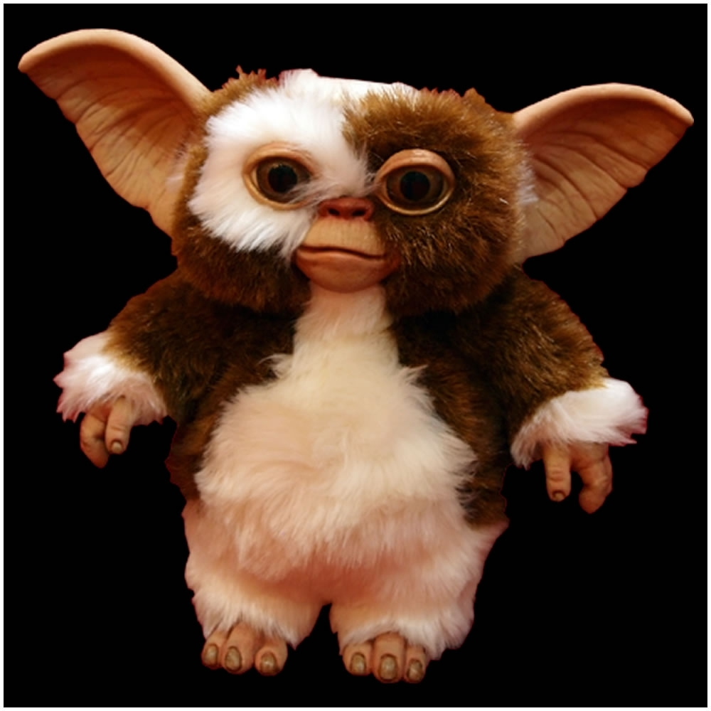 10 New Pictures Of Gizmo From Gremlins FULL HD 1080p For PC Background 2018 free download official gremlins gizmo puppet prop trick or treat studios