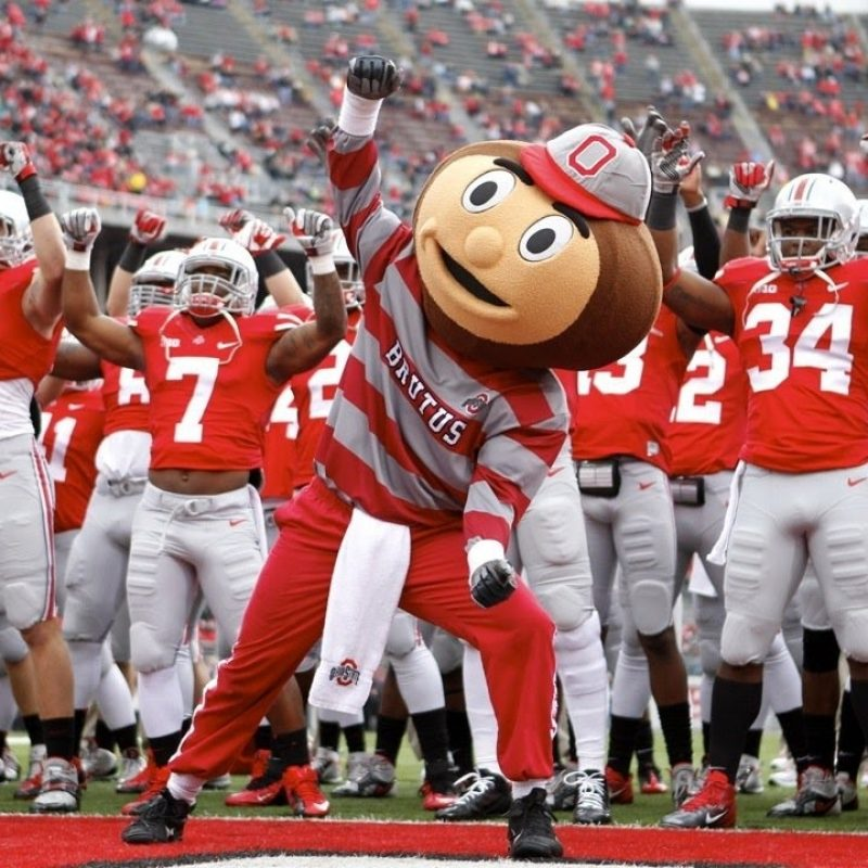 10 Top Ohio State Buckeyes Image FULL HD 1080p For PC Background 2018 free download ohio state buckeyes football 2016 17 season hype unstoppable 800x800