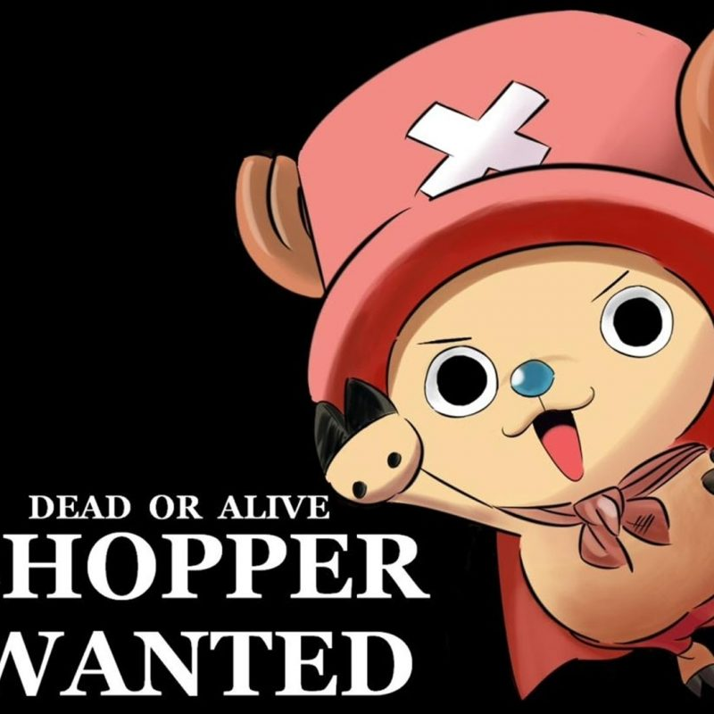 10 Latest One Piece Chopper Wallpaper FULL HD 1080p For PC Background 2020 free download one piece cute chopper background cinema wallpaper 1080p 800x800