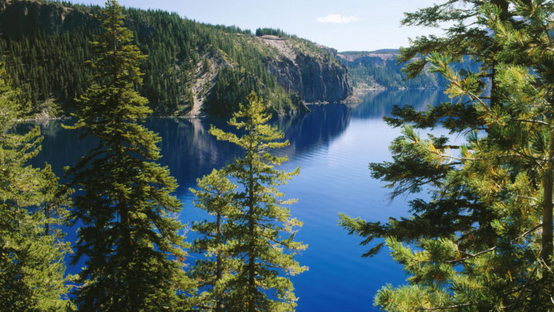 10 Most Popular Oregon Nature Pictures FULL HD 1080p For PC Background 2018 free download oregon nature hd wallpaper background images 800x450