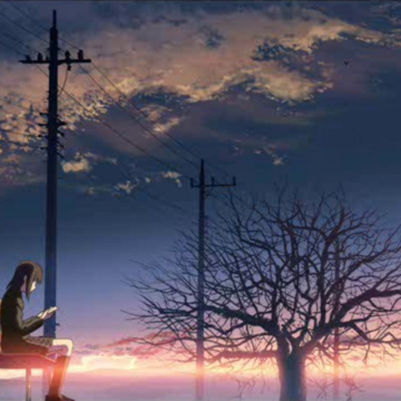 10 New 5 Centimeters Per Second Poster FULL HD 1080p For PC Background 2018 free download ost18 5 centimeters per second end theme video dailymotion 800x800