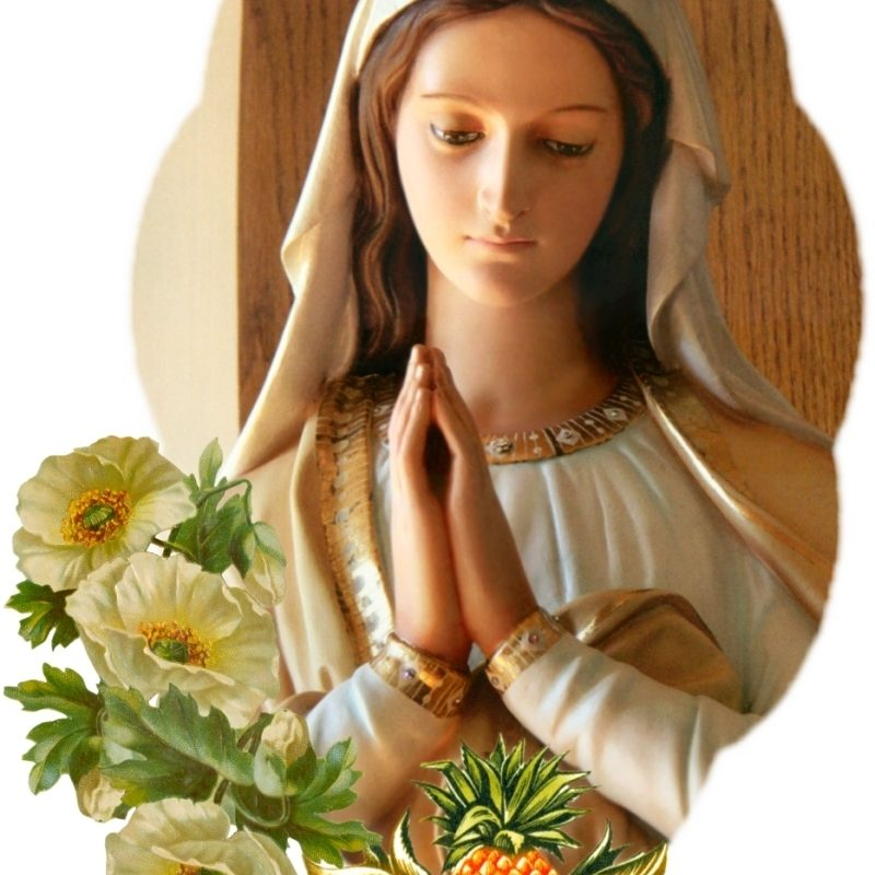 10 New Photos Of Mother Mary FULL HD 1080p For PC Background 2020 free download our lady 1 800x800