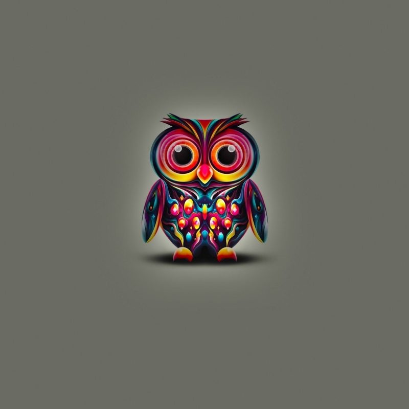 10 Top Owl Art Desktop Wallpaper FULL HD 1920×1080 For PC Desktop 2018 free download owl art widescreen wallpapers 21131 baltana 800x800