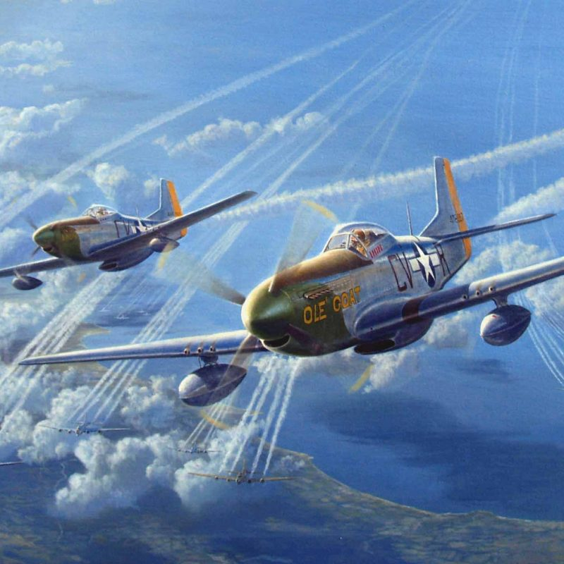 10 Latest P 51 Wallpaper FULL HD 1920×1080 For PC Background 2018 free download p51 mustang wallpapers group 80 800x800