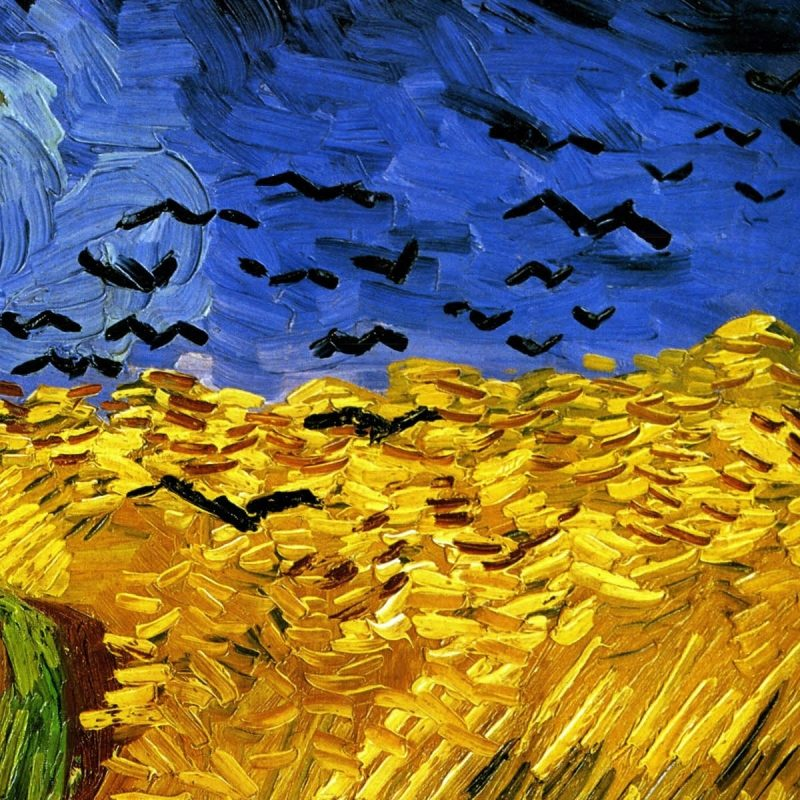 10 Most Popular Van Gogh Painting Wallpaper FULL HD 1920×1080 For PC Desktop 2020 free download painting of vincent van gogh field wallpapers and images 800x800