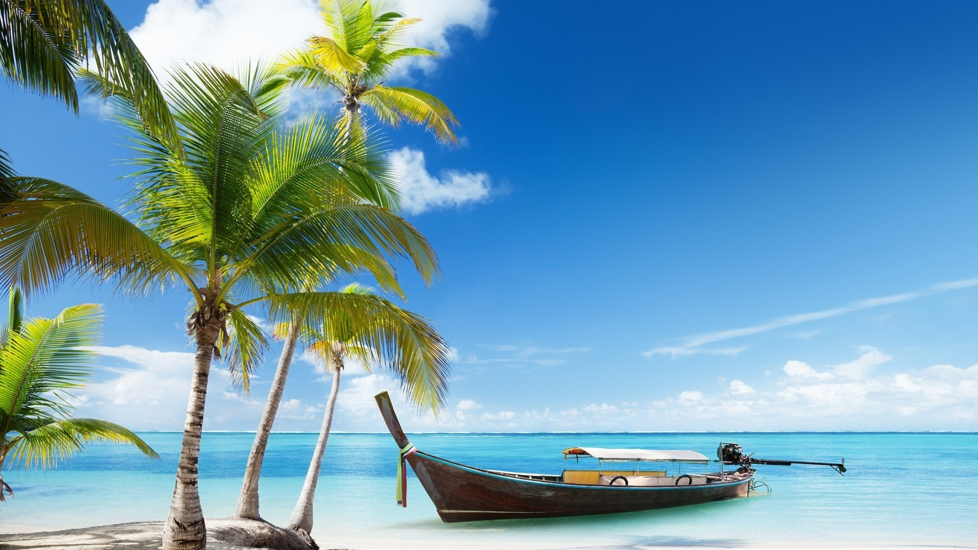 10 Latest Palm Tree Beach Wallpaper FULL HD 1920×1080 For PC Background