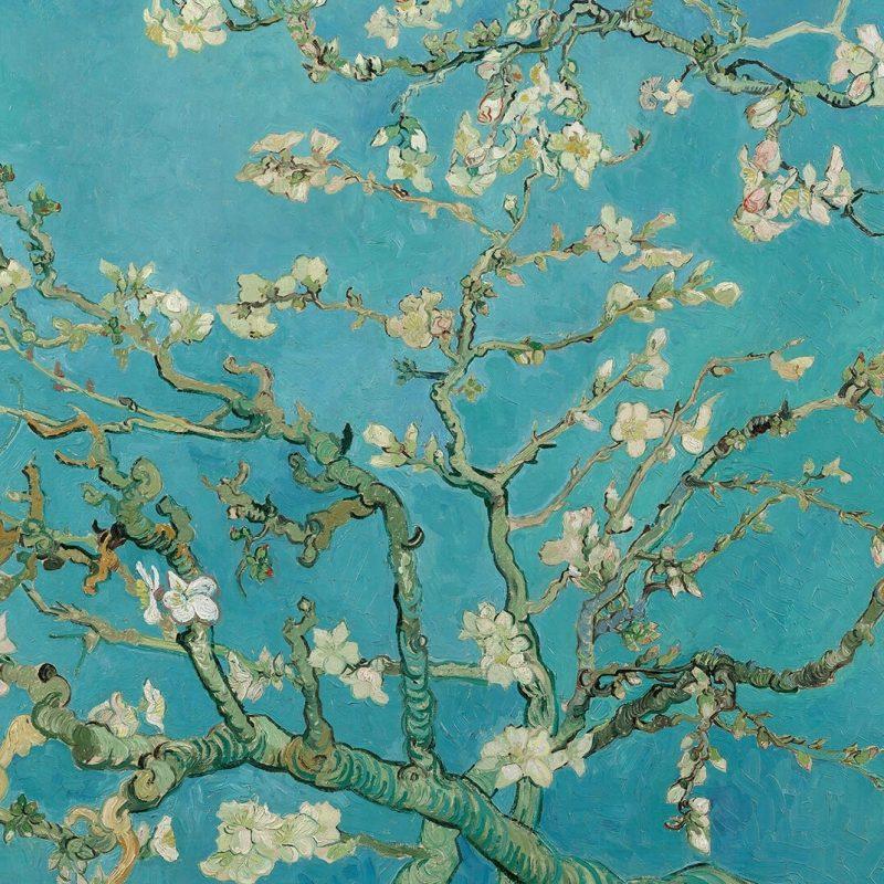 10 New Van Gogh Almond Blossoms Wallpaper FULL HD 1920×1080 For PC Background 2018 free download papier peint fresque branches damandes de van gogh murals wallpaper 800x800