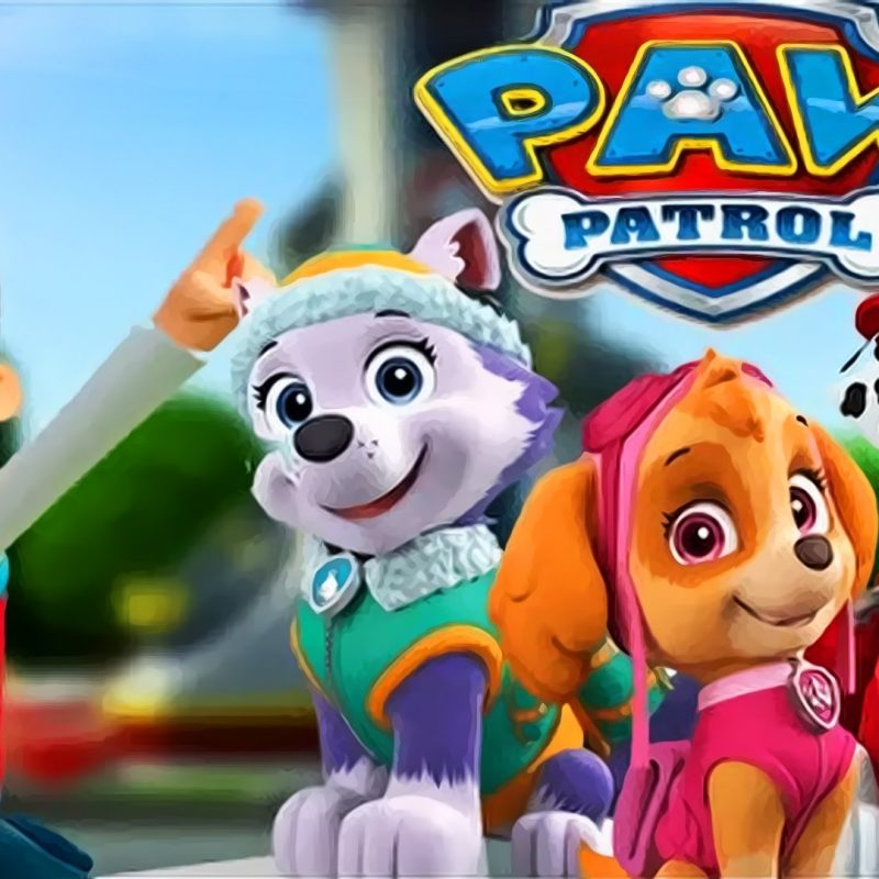10 New Paw Patrol Desktop Wallpaper FULL HD 1920×1080 For PC Desktop 2018 free download patrol wallpapers in high resolution 1920x1080 pxsari fisher 800x800