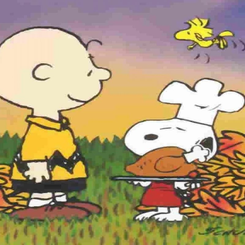 10 Latest Happy Thanksgiving Charlie Brown Wallpaper FULL HD 1920×1080 For PC Background 2018 free download peanuts thanksgiving wallpapers wallpaper wallpapers pinterest 800x800