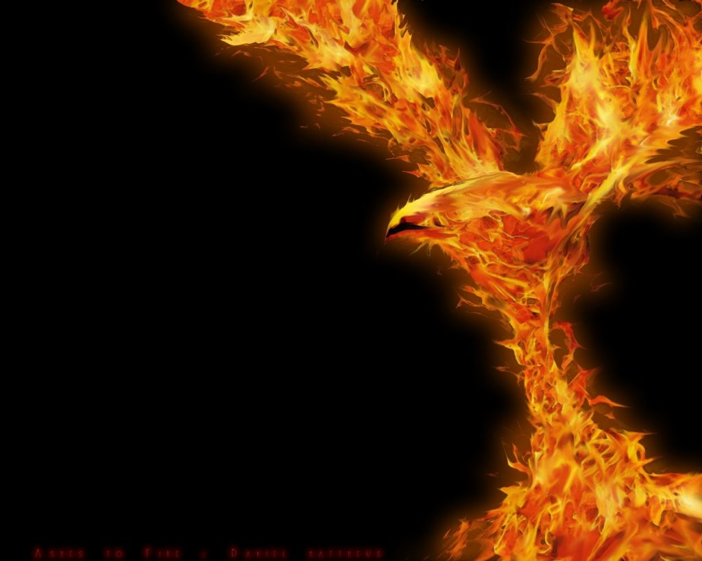 10 Latest Phoenix Rising From The Ashes Wallpaper FULL HD 1920×1080 For PC Background 2020 free download phoenix ashes to firespud383 on deviantart 1024x819