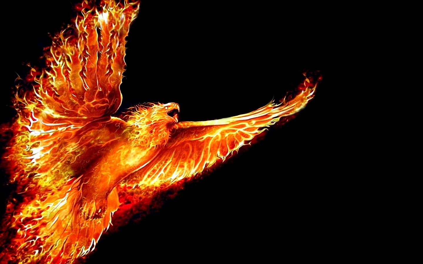 phoenix bird rising from the ashes - google search | fantasy