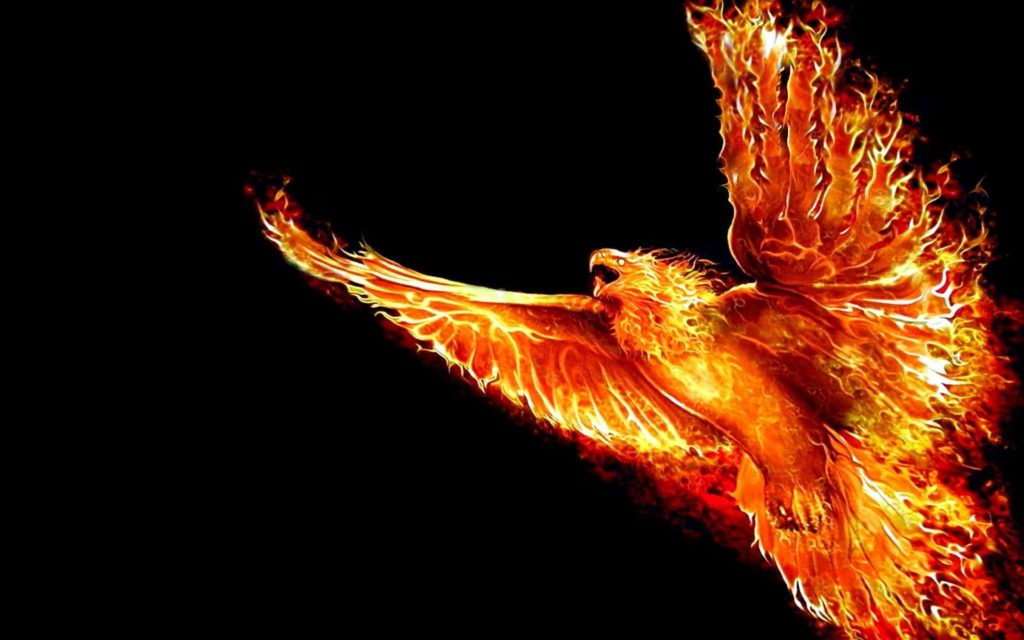 10 Latest Phoenix Rising From The Ashes Wallpaper FULL HD 1920×1080 For PC Background 2020 free download phoenix bird wallpapers free download page 2 of 3 wallpaper wiki 1024x640