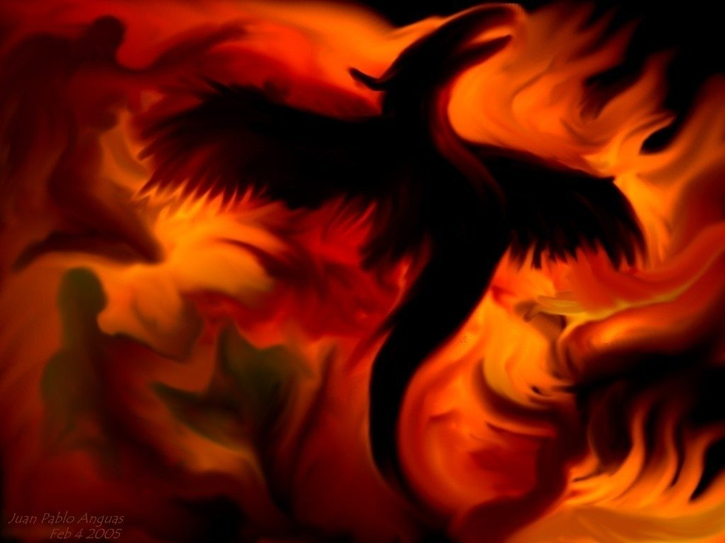 10 Latest Phoenix Rising From The Ashes Wallpaper FULL HD 1920×1080 For PC Background 2020 free download phoenix rising from the ashes wallpaper 12022 baidata 1024x768