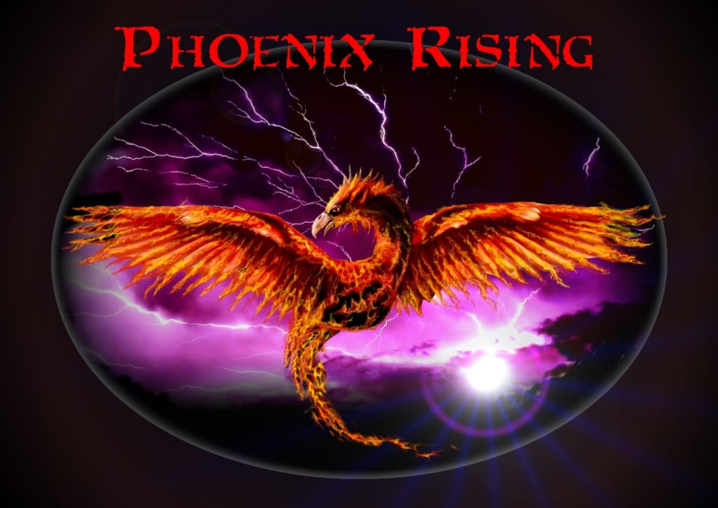 10 Latest Phoenix Rising From The Ashes Wallpaper FULL HD 1920×1080 For PC Background 2020 free download phoenix risingcgartner on deviantart 1024x725