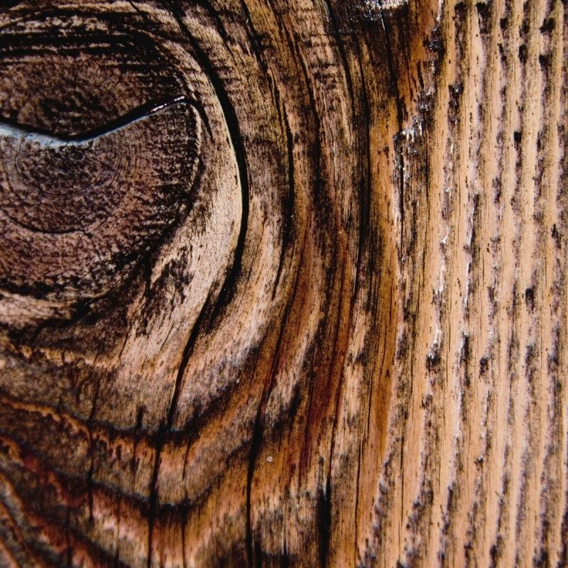 10 Latest Wood Grain Phone Wallpaper FULL HD 1080p For PC Background 2020 free download phone wallpaper wood all types of design pinterest wallpaper 800x800