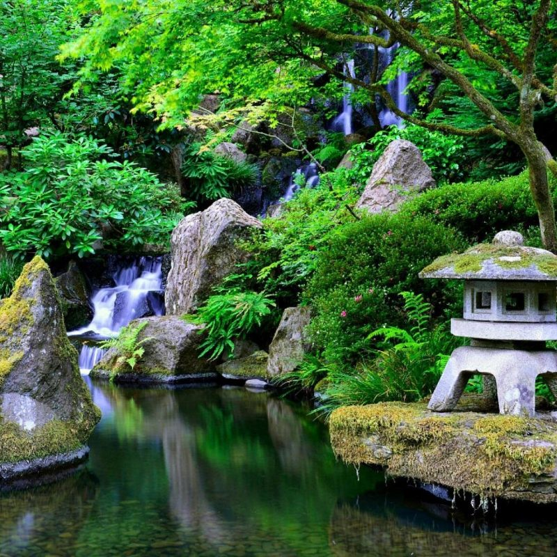 10 Latest Japanese Garden Hd Wallpaper FULL HD 1920×1080 For PC Background 2020 free download photos japanese garden media file pixelstalk 800x800