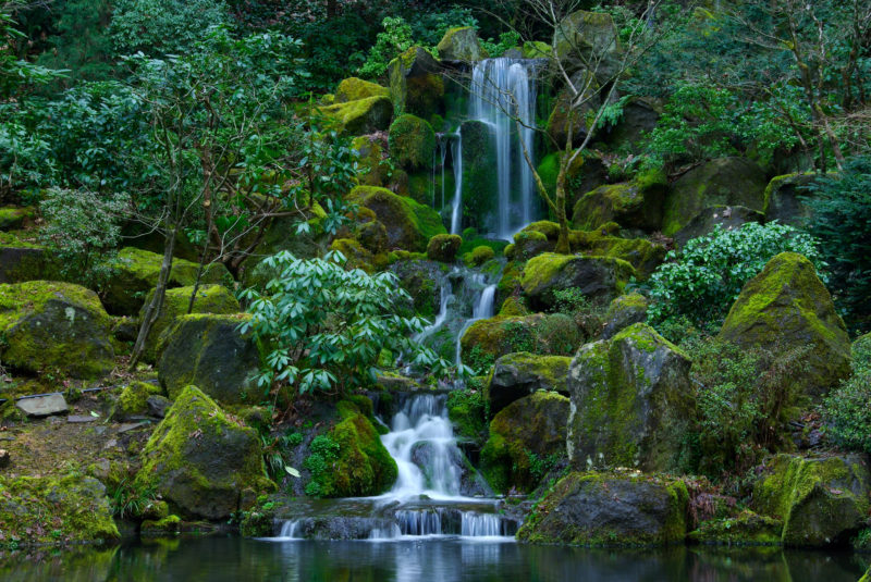 10 Most Popular Oregon Nature Pictures FULL HD 1080p For PC Background 2018 free download picture usa portland japanese oregon nature waterfalls 3060x2048 800x535
