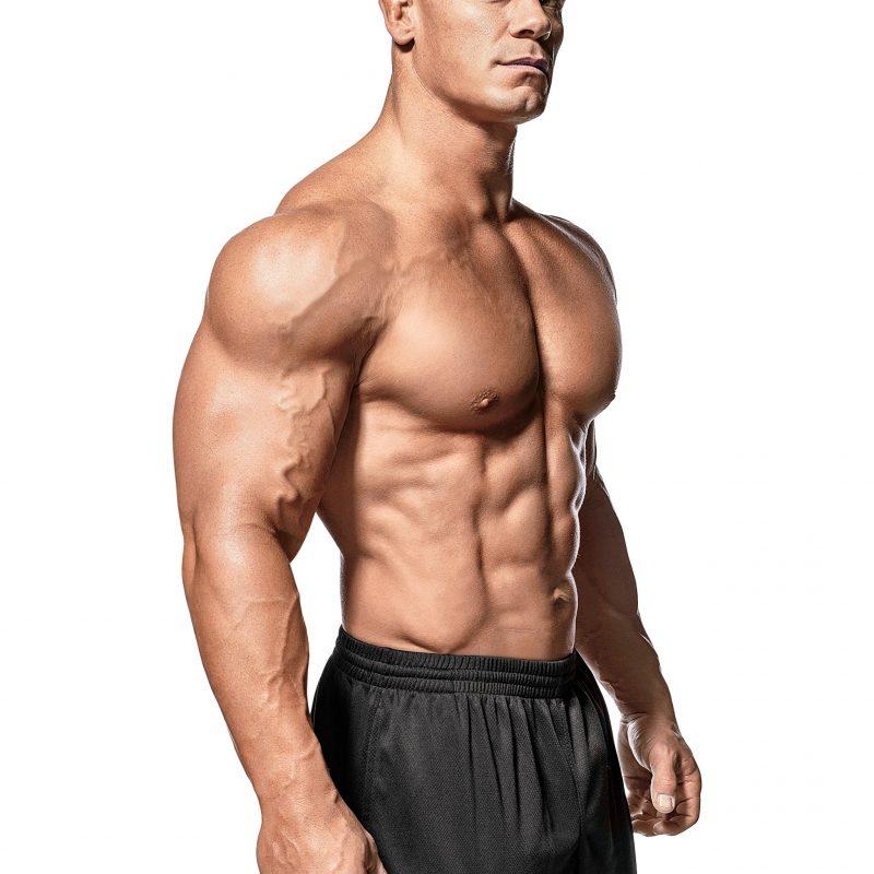 10 Latest John Cena Bodybuilding Photos FULL HD 1080p For PC Desktop 2020 free download pictures men john cena bodybuilding white background 2048x2732 800x800