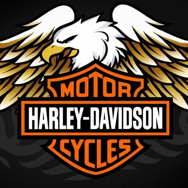 10 Best Images Of Harley Davidson Logo FULL HD 1920×1080 For PC Background 2018 free download pictures of harley davidson logos harley davidson eagle logoshow 800x800