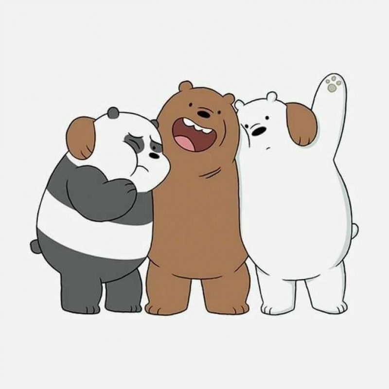 10 Top We Bare Bears Wallpaper FULL HD 1920×1080 For PC Background 2020 free download pinalexandra b on fondos pinterest bare bears wallpaper 800x800