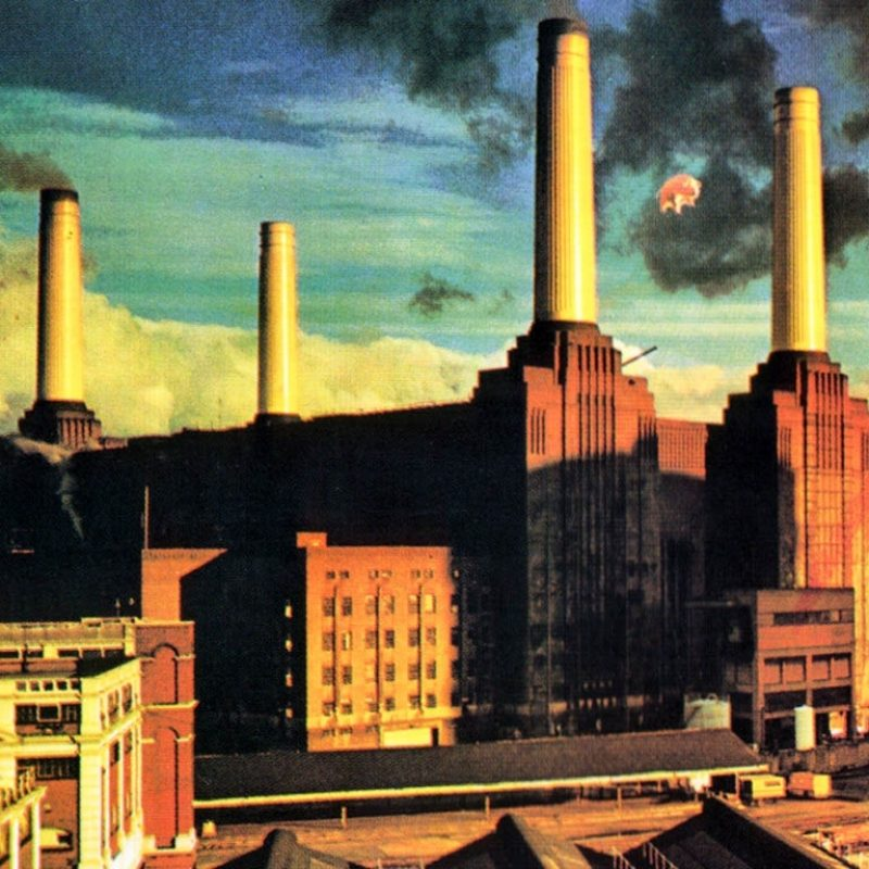 10 Top Pink Floyd Animals Wallpaper Hd FULL HD 1920×1080 For PC Desktop 2018 free download pink floyd amazing hd wallpapers and desktop backgrounds in high 800x800