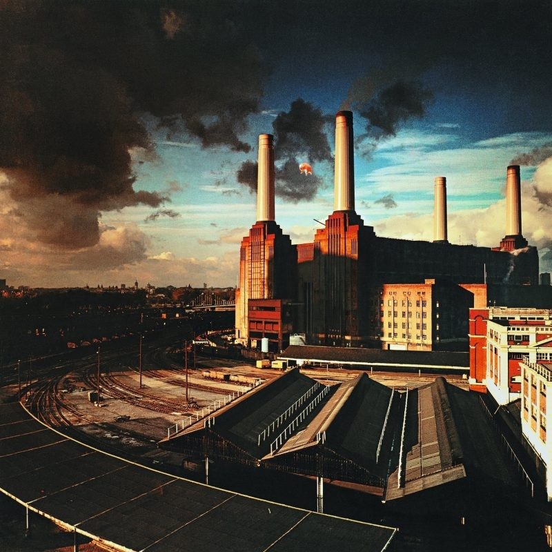 10 Most Popular Pink Floyd Animals Wallpaper FULL HD 1920×1080 For PC Background 2018 free download pink floyd animals wallpaper 70 images 800x800