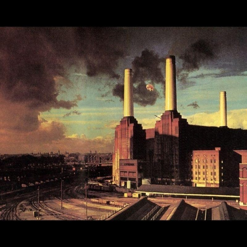 10 Most Popular Pink Floyd Animals Wallpaper FULL HD 1920×1080 For PC Background 2018 free download pink floyd animals wallpapers wallpaper cave 800x800
