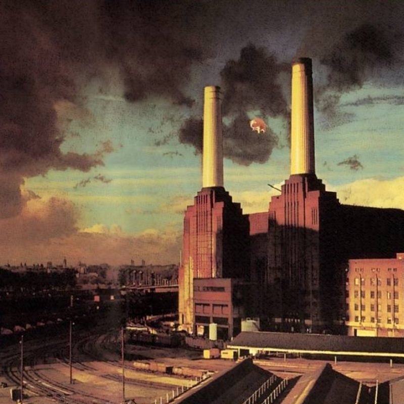 10 Most Popular Pink Floyd Animals Wallpaper FULL HD 1920×1080 For PC Background 2018 free download pink floyd pigs wallpaper 1600x1200 259729 wallpaperup 800x800
