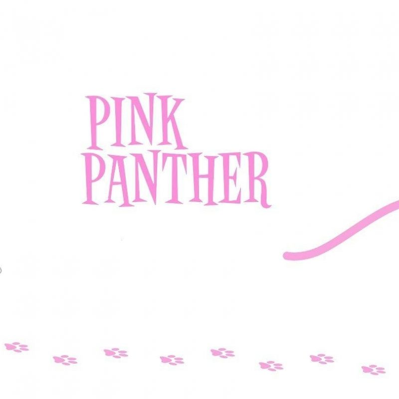10 Most Popular Pink Panther Wall Paper FULL HD 1920×1080 For PC Background 2020 free download pink panther wallpapers wallpaper cave 800x800