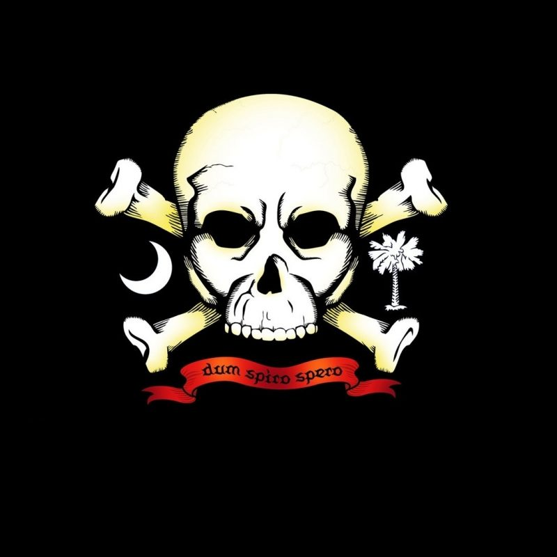 10 Most Popular Skulls And Crossbones Wallpaper FULL HD 1080p For PC Background 2018 free download pirate skull and crossbones walldevil 800x800