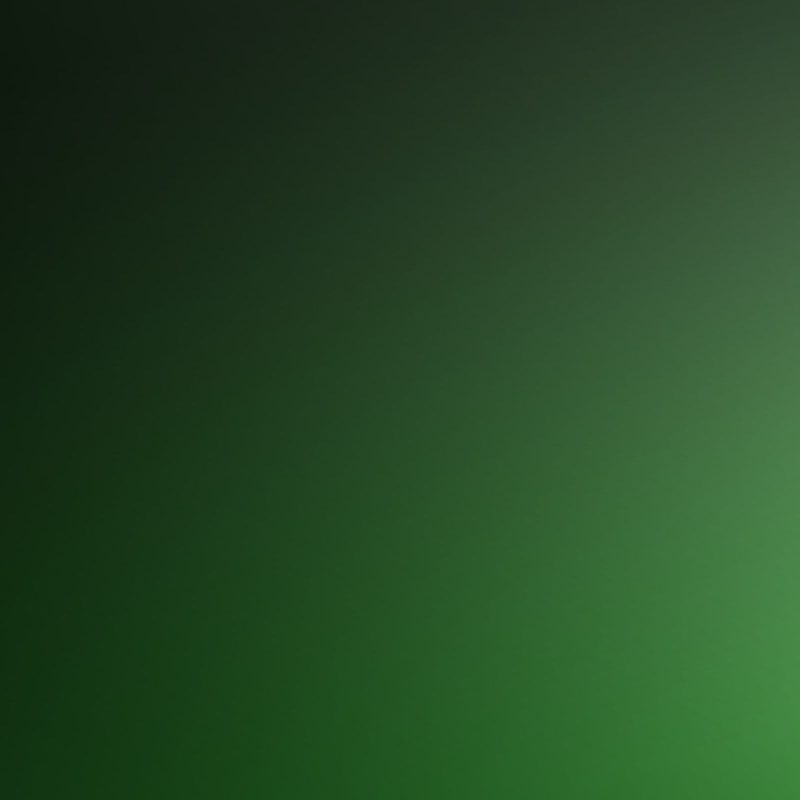 10 Most Popular Plain Dark Green Background FULL HD 1080p For PC Background 2021 free download plain color wallpaper backgrounds group 71 1 800x800