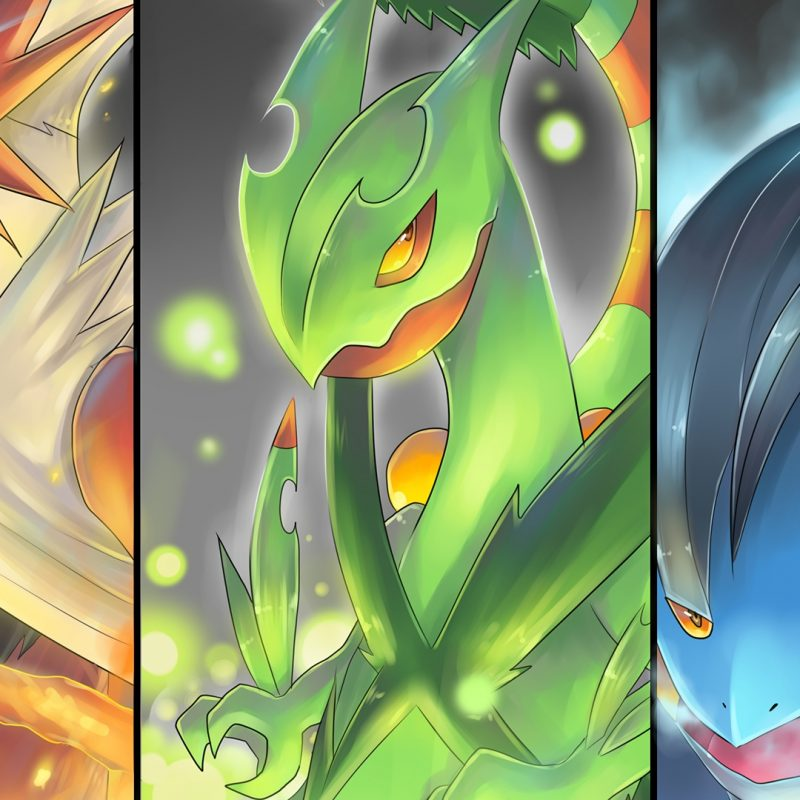 10 Most Popular Pokemon Mega Evolution Wallpaper FULL HD 1080p For PC Background 2018 free download pokemon full hd wallpaper and background image 1920x1080 id661598 800x800