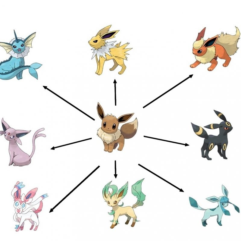 10 Best Pictures Of Eevee Evolutions FULL HD 1080p For PC Background 2018 free download pokemon ultra sun and moon eevee evolutions and their strategic 800x800