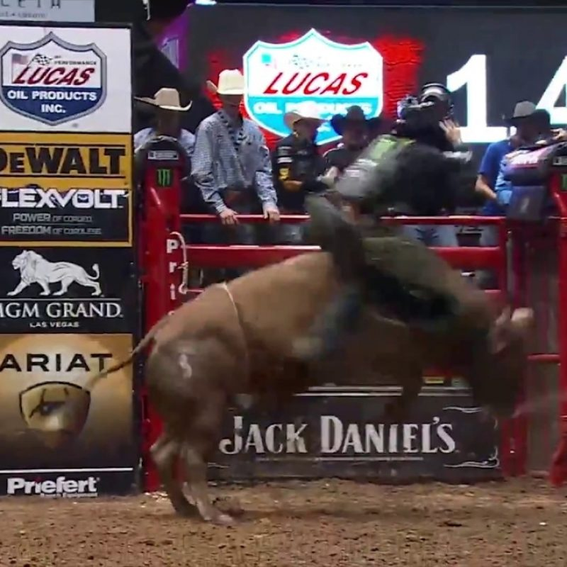 10 Most Popular Professional Bull Riders Inc FULL HD 1080p For PC Background 2018 free download professional bull rider chase outlaw discusses how he got started 800x800