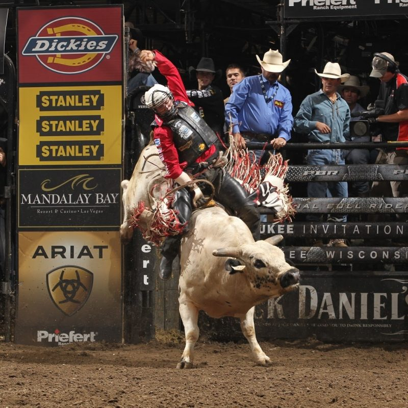 10 Most Popular Professional Bull Riders Inc FULL HD 1080p For PC Background 2018 free download professional bull riders hit nyc boyz rule our world 800x800