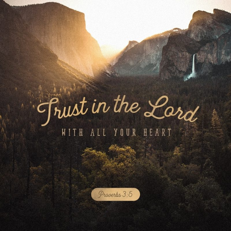 10 Latest Proverbs 3 5 6 Wallpaper FULL HD 1920×1080 For PC Desktop 2018 free download proverbs 35 6 niv trust in the lord with all your heart and lean 800x800