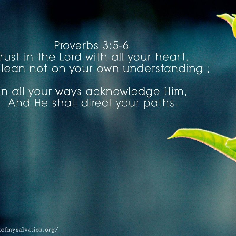 10 Latest Proverbs 3 5 6 Wallpaper FULL HD 1920×1080 For PC Desktop 2018 free download proverbs wallpapers wallpaper cave 800x800