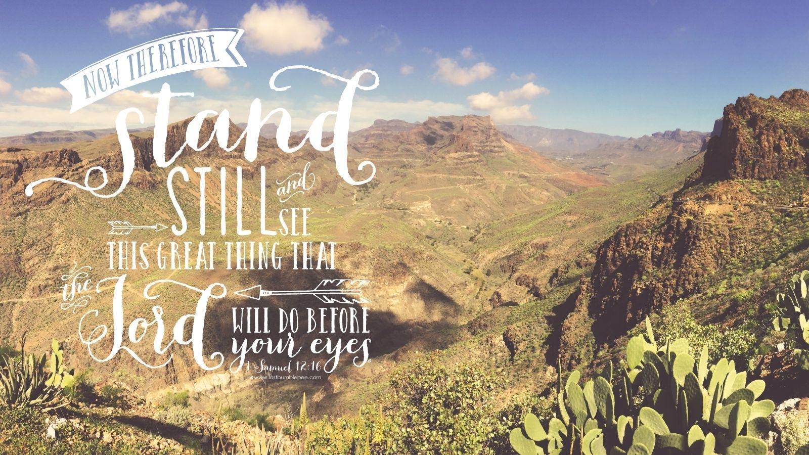 psalm 37:4 desktop macbook background / bible verse / hand lettering