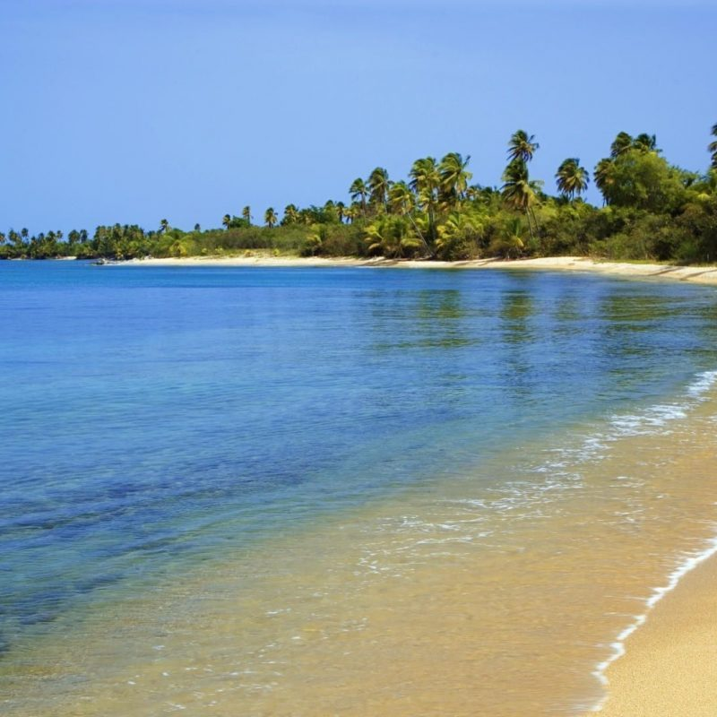 10 Most Popular Puerto Rico Beaches Wallpaper FULL HD 1920×1080 For PC Desktop 2018 free download puerto rico beach wallpaper high quality natures wallpapers 800x800